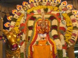 Karpagambal, Vrshabha Vahanam 2013