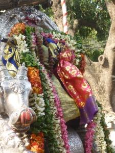 Shiva Velleeswara, Mylapore