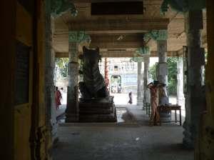 Nandi at Tirupungur