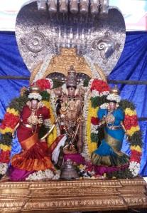 Sarngapani on Masi Makham day