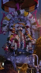Chandikeswarar, rShabha vAhanam, Mylapore, 2014