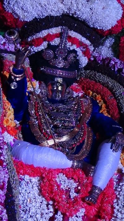 Kapali close up, rShabha vAhanam festival, 2014